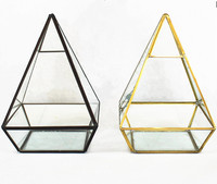 Wholesale New Design and High Quality Pyramid Shaped Geometrical Glass Vase for Plant Moss