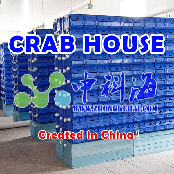 Soft shell crab breeding systeml indoor crab condo