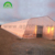High Quality Natural ventilation temperature control orchid polycarbonate film greenhouse with hydroponic system