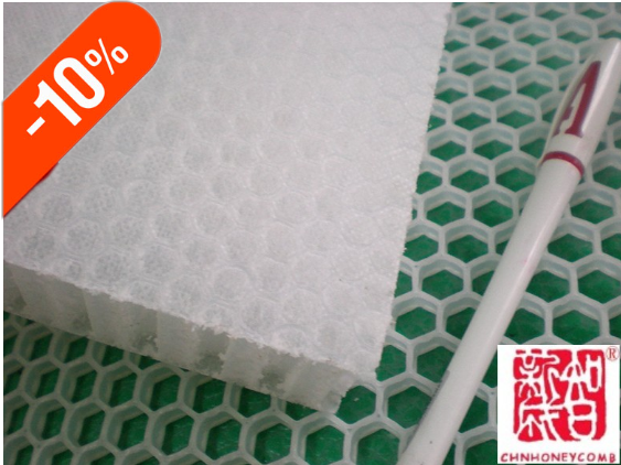 PP honeycomb core/panels China supplier