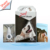 Dental Products For Dogs China Teeth Whitening Best product from share nano