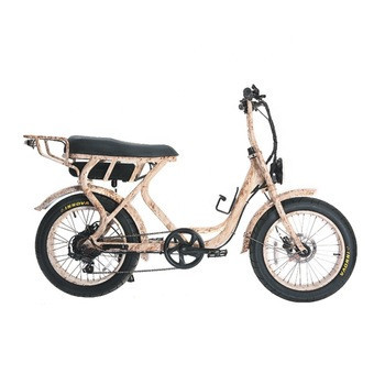 Aluminum Alloy E-Bike Fat Tire with Lithium Battery Electric Bike Women Kind