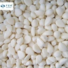 /product-detail/iqf-frozen-garlic-puree-62082782753.html
