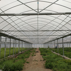 plastic film commercial tunnel agricultural greenhouse with hydroponics system