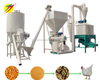 HKJ250 Chicken/Animal/Cow/Fish Feed Pellet Machine Production Line ,Output 1ton/hour