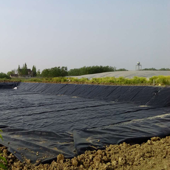 Competitive price ASTM geomembrane hdpe 1.5mm