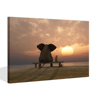 Elephant and Dog Sitting Together Watching Sunset Picture Poster Canvas Wall Art Animals Friends Decoration