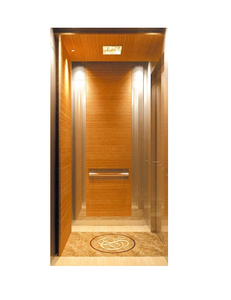 Customized Small Residential Home Elevators