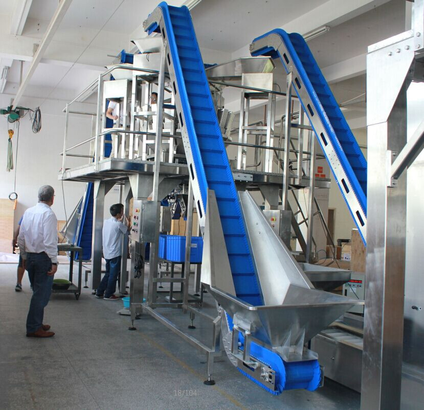acclivitous conveyor /inclined conveyor for dried fruit, blueberry, peanut, kernel, nuts,etc