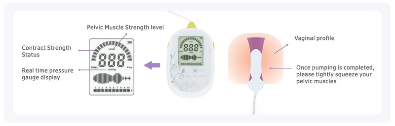 CE Approved Pelvic Floor Exerciser