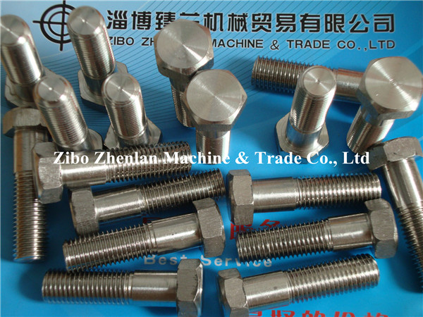 Stainless Steel AISI 304 Bolt