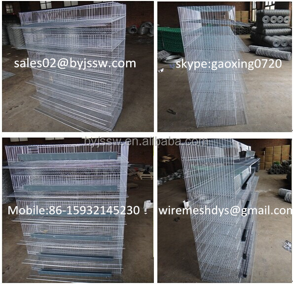 Wire Mesh Quail Cages For Quail Farm