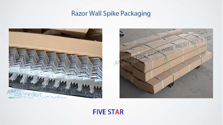 2.0mm/2.0m Razor Wall Spikes for Sale