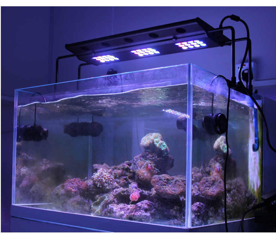 108w Programmable Led Aquarium Light For Coral Reef(sl-a001)
