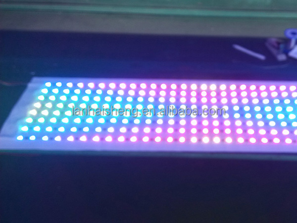 2014 Surprising Price digital lpd8806 rgb led strip 5050