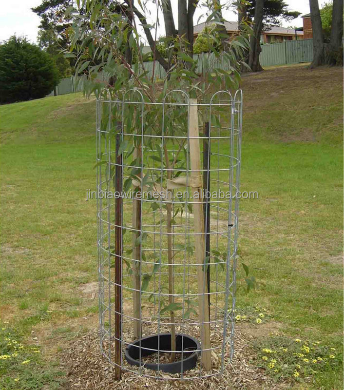 Weld Mesh Tree Guard Buy Weld Mesh Tree Guard Good Price