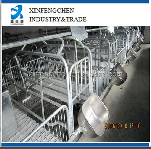 pig farming equipment--gestation stall