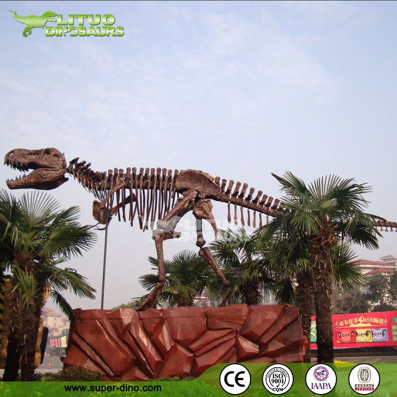 Life-size T-Rex Dinosaur Fossils
