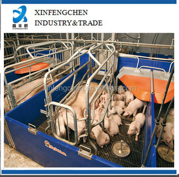 farrowing stall for pig