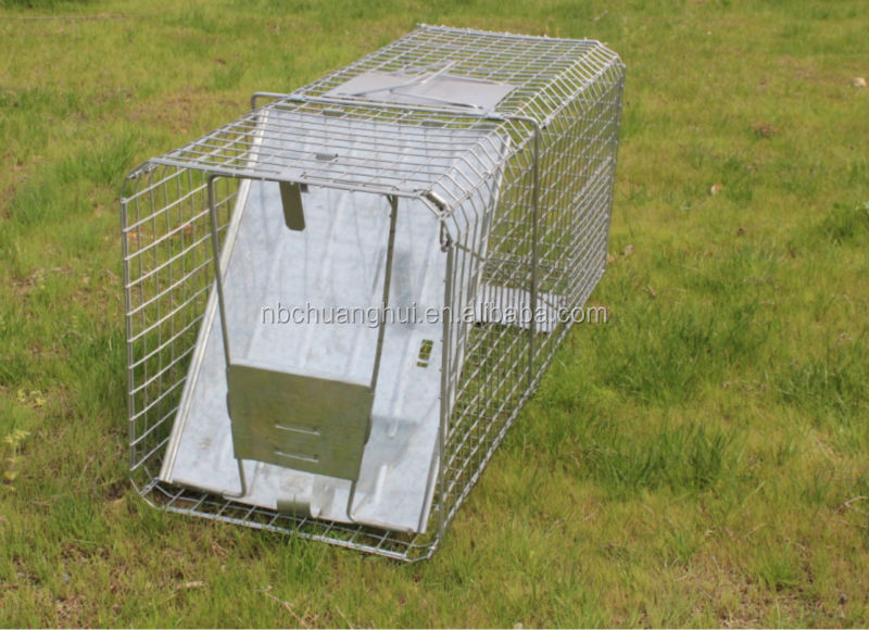 "Collapsible Animal Trap 30' X 11' X 12"" Hot Style"