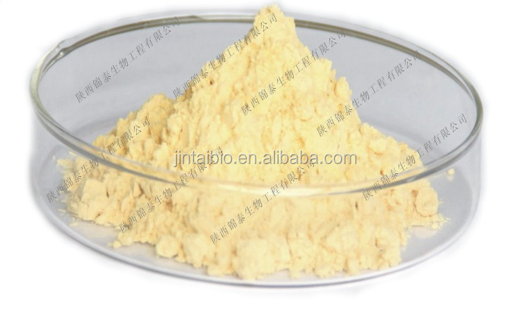 BV ISO GMP Kosher high quality ginseng root extract