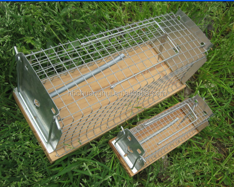 heavy Duty Collapsible Metal Animal Trap