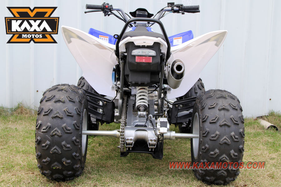 China ATV 250cc