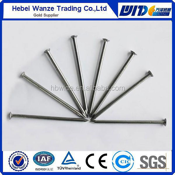 without head galvanized Common Nails