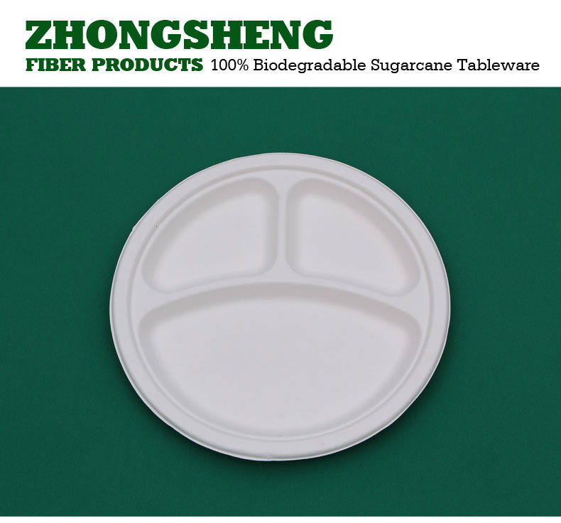 10 inch 3 compartments paper plate biodegradable