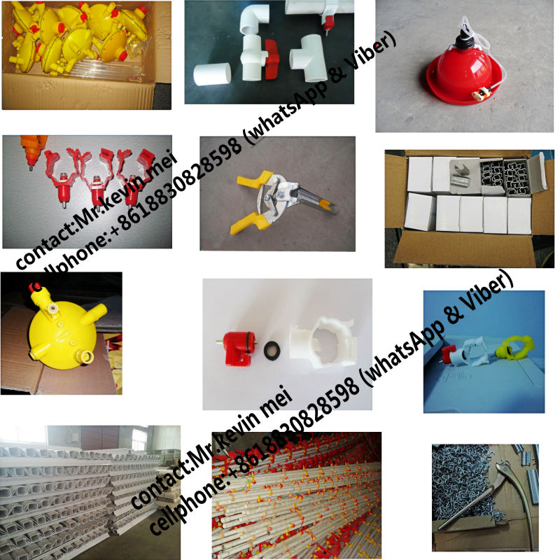 2017 hot sale automatic chicken cage for sale in philippines