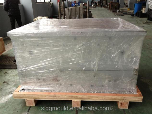 Taizhou high quality customize plastic injection mould for plastic pallet/plastic tray