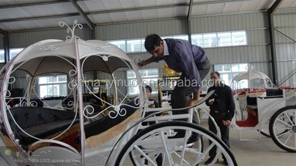 White comfortable 2 rows tourism sightseeing horse carriage for sale