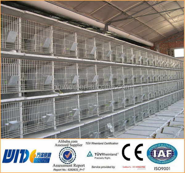 Rabbit Farming Cage Rabbit Breeding Cages Commercial