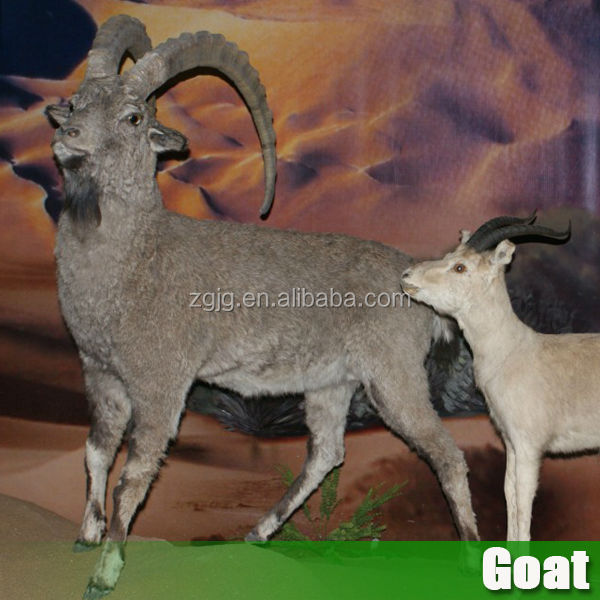 Secret Places Goat Simulator: Great Quality Animal Animatronic Simulation Life Size Goat