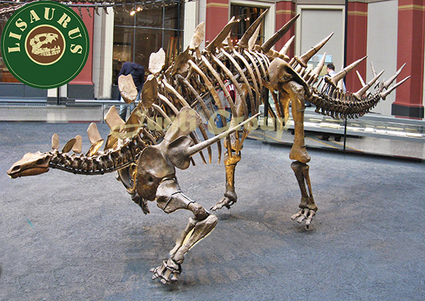 Lisaurus-L501 Artificial Small dinosaur skeleton replica for sale