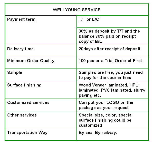 Wellyoung Service