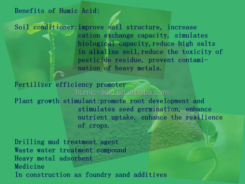 Hot sales Water Soluble Organic Fertilizer Additive Humic Acid Powder