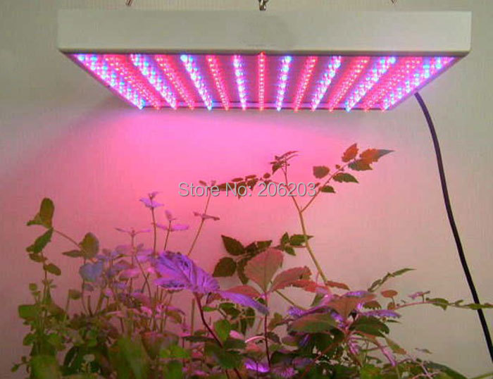 14W led grow light panel 225x0.06W blue red color ratio
