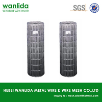 Anping factory high quality electro welded mesh ( SGS )