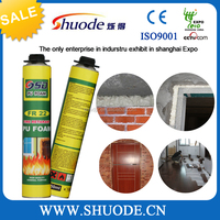 750ml Waterproof High Expanding PU Foam Sealant