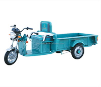 800w motor flat carriage electric tricycle for load