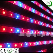 DC12V 4ft 36w hydroponic free samples importers led grow light