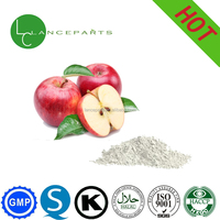 High quality Apple fruits powder