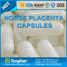 China Wholesale Products Horse Placenta Extract Tablet