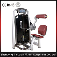 Exercise machines life fitness back extension / back trainer back stretch machine / TZ-6006 gym equipment
