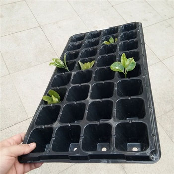 Widely application forestry planting seedling plastic trays