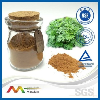 Hot Sale GMP&ISO Mugwort Extract