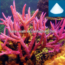 Coral Reef Seawater Fish Tank Decoration Aquarium Synthetic Sea Salt