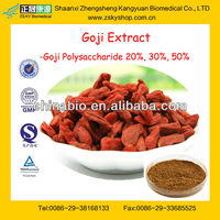 GMP Manufacturer Supply Natural Goji Berry Extract Powder