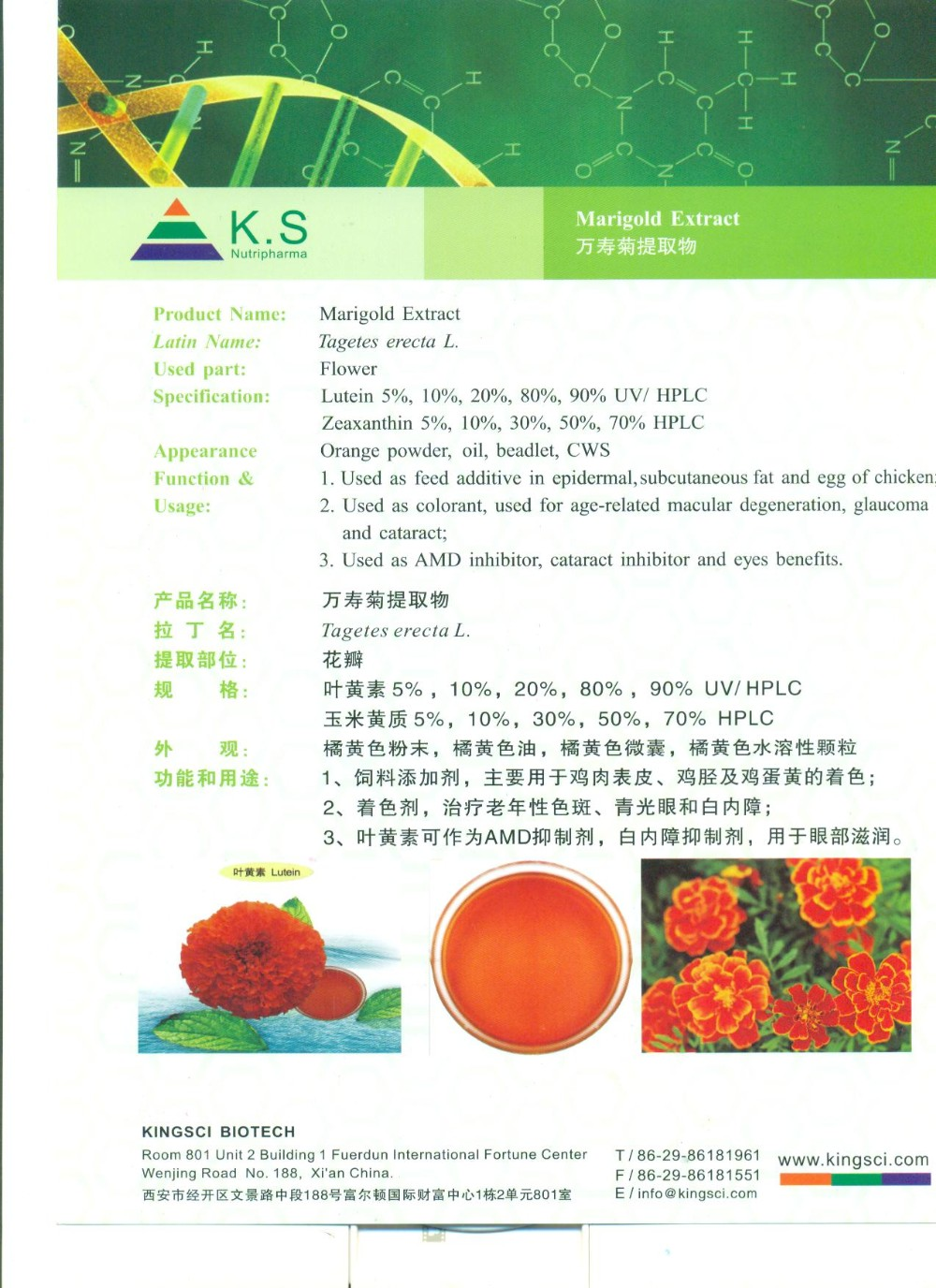 Super lutein 100% pure marigold extract, lutein price 5%~90% --- Kingsci top main product